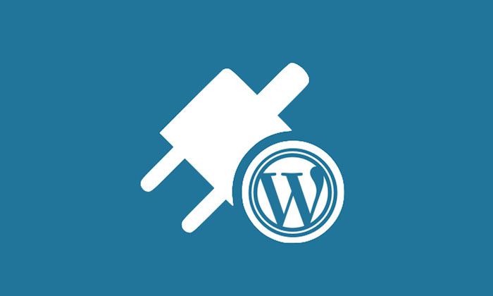 Best WordPress Plugin for Payments